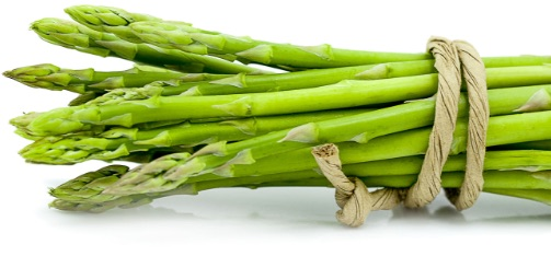 A bundle of asparagus