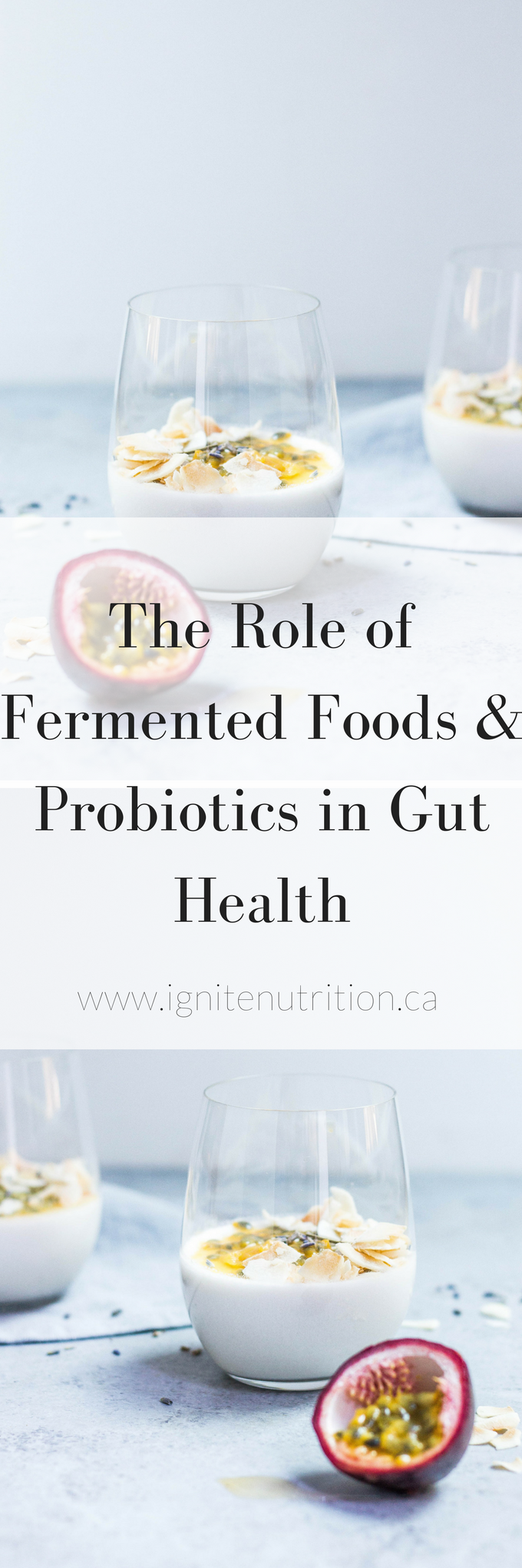 Learn how fermented foods can improve your digestive health. Andrea Hardy, gut health expert and dietitian talks about probiotics, prebiotics and fermented foods!