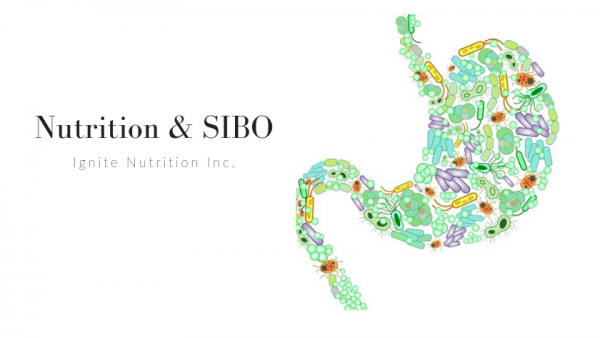 Need help with SIBO and nutrition? Work with one of our top registered dietitians who are experts in gut health at Ignite Nutrition in Calgary, Alberta