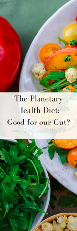 A Planetary Diet can help us be healthier and is good for the planet, our dietitians in Calgary, Alberta are experts in gut health, digestive health and can help manage your digestive issues.